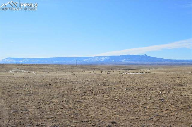County Road 52, Hoehne, CO 81064 (#6028251) :: Tommy Daly Home Team