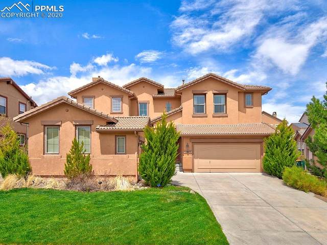 13855 Single Leaf Court, Colorado Springs, CO 80921 (#6031147) :: Action Team Realty