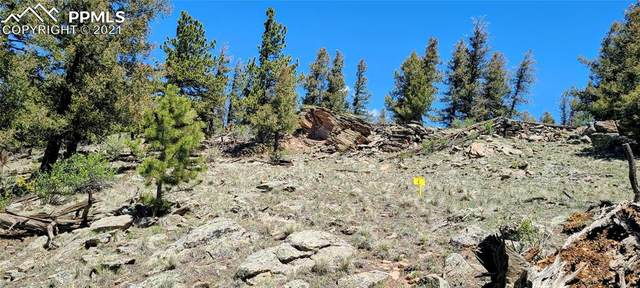 Lot 346 Trout Creek Lane, Fairplay, CO 80440 (#6032328) :: Action Team Realty