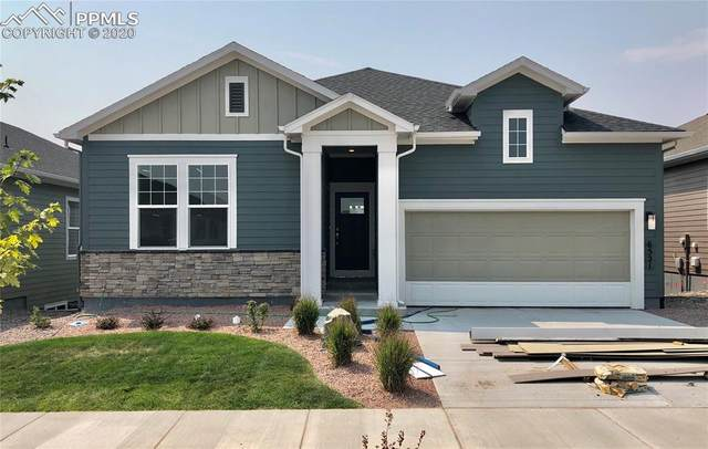 6521 Twin Falls Court, Colorado Springs, CO 80924 (#6033679) :: Action Team Realty