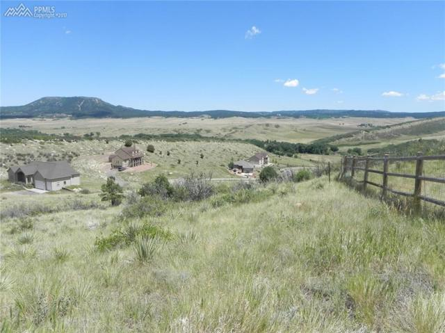 5453 Country Club Drive, Larkspur, CO 80118 (#6034121) :: Colorado Home Finder Realty