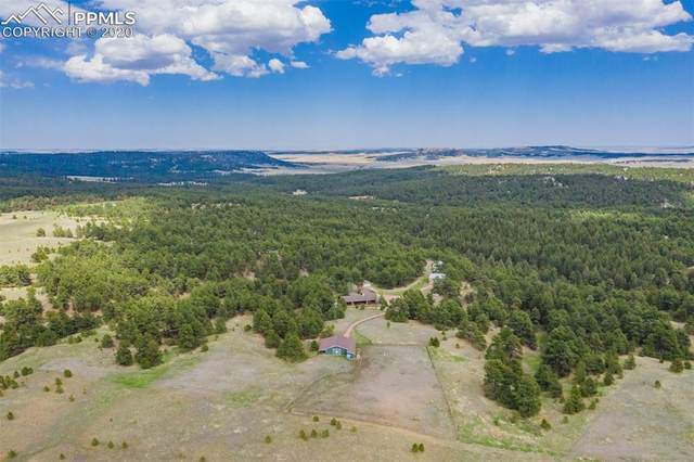 20160 Saddle Blanket Drive, Peyton, CO 80831 (#6034992) :: The Kibler Group
