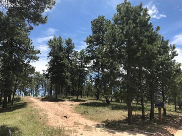 13395 Frank Road, Colorado Springs, CO 80908 (#6042930) :: RE/MAX Advantage