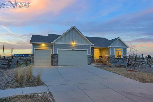 8851 Tranquil Knoll Lane, Colorado Springs, CO 80927 (#6043448) :: The Daniels Team