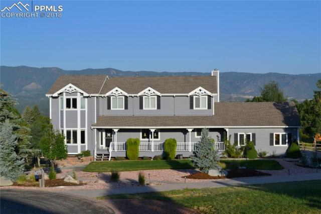 428 Torrey Pines Way, Colorado Springs, CO 80921 (#6052973) :: The Hunstiger Team