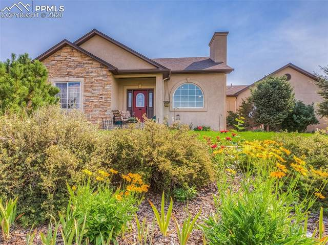5950 Filly Lane, Colorado Springs, CO 80908 (#6053055) :: The Daniels Team