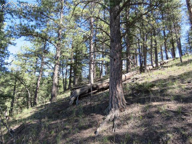 291 Mesa Drive, Florissant, CO 80816 (#6059283) :: CC Signature Group