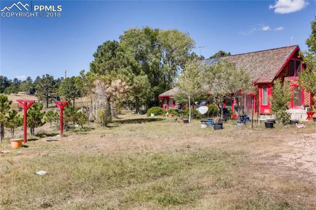 15665 Softwood Road, Elbert, CO 80106 (#6062244) :: The Peak Properties Group
