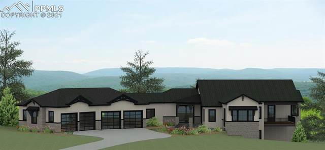 14359 Spyglass Hill Place, Colorado Springs, CO 80921 (#6062380) :: Action Team Realty