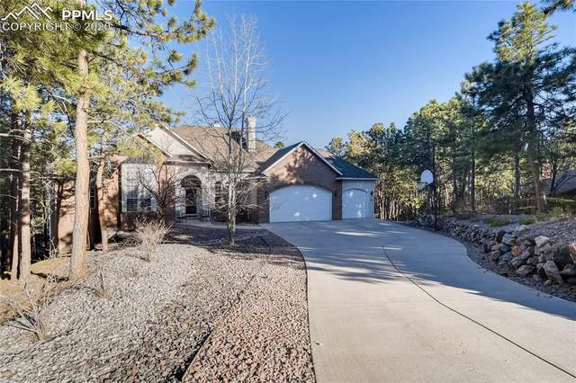 205 Blue Garter Way, Monument, CO 80132 (#6063994) :: 8z Real Estate