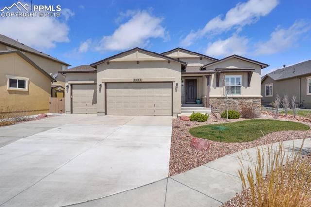 5254 Eldorado Canyon Drive, Colorado Springs, CO 80924 (#6065919) :: The Treasure Davis Team