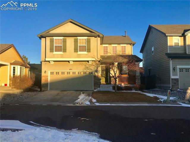 4911 Turning Leaf Way, Colorado Springs, CO 80922 (#6066806) :: The Peak Properties Group