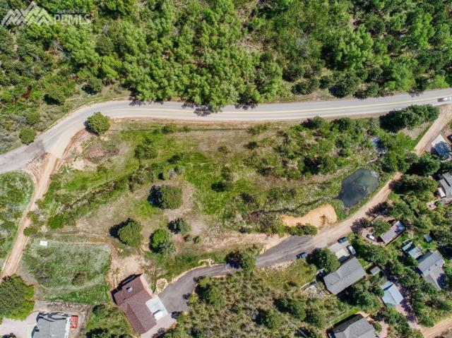 93 Hermosa Avenue, Palmer Lake, CO 80133 (#6067174) :: Harling Real Estate