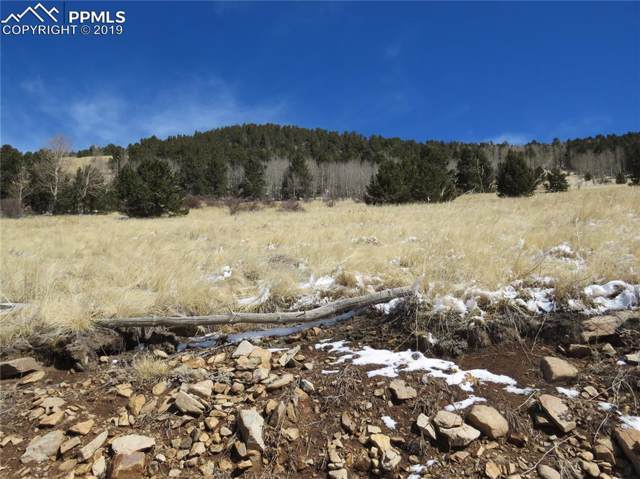 TBD Rhyolite Mountain, Cripple Creek, CO 80813 (#6067359) :: The Daniels Team