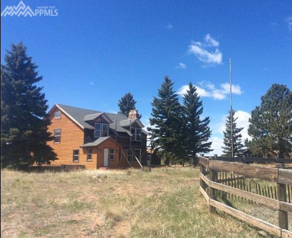 9614 Highway 24 Highway, Divide, CO 80814 (#6068884) :: The Peak Properties Group