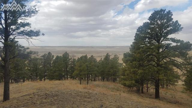 40362 Gold Nugget Drive, Deer Trail, CO 80105 (#6068993) :: 8z Real Estate