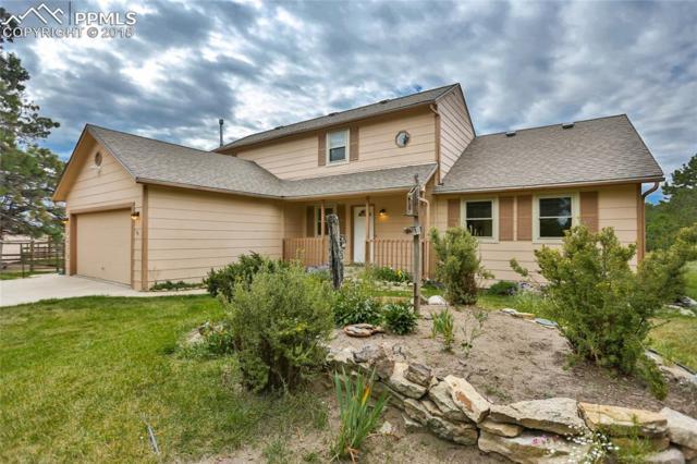12415 Hodgen Road, Elbert, CO 80106 (#6069158) :: 8z Real Estate