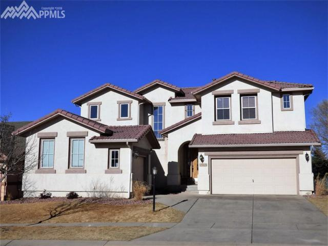 10109 Palisade Ridge Drive, Colorado Springs, CO 80920 (#6070413) :: Jason Daniels & Associates at RE/MAX Millennium