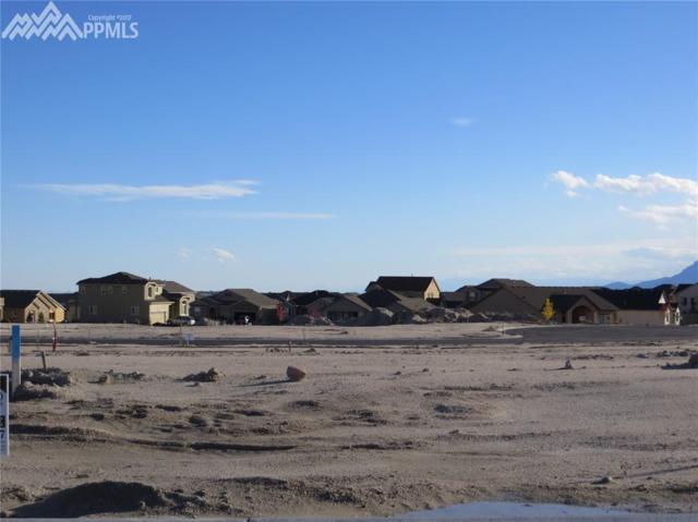 9812 Surrey Lane, Colorado Springs, CO 80924 (#6072212) :: 8z Real Estate