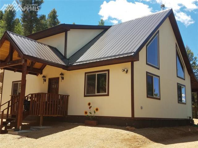 34 Snowberry Creek Road, Florissant, CO 80816 (#6074267) :: 8z Real Estate