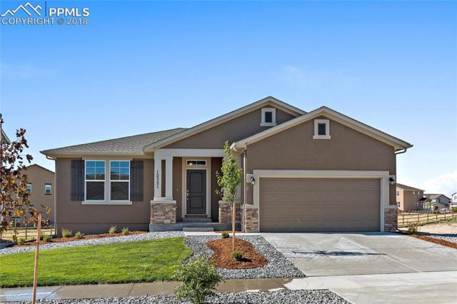 12721 Longview Park Lane, Peyton, CO 80831 (#6076698) :: Fisk Team, RE/MAX Properties, Inc.