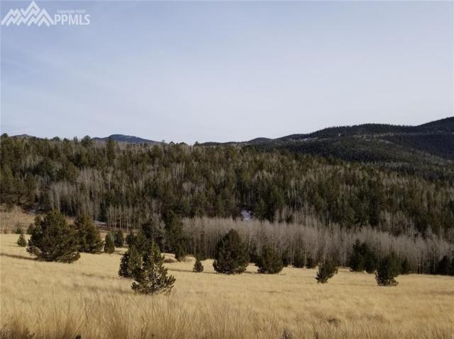 TBD 2 Highway 67 Road, Cripple Creek, CO 80813 (#6077574) :: 8z Real Estate