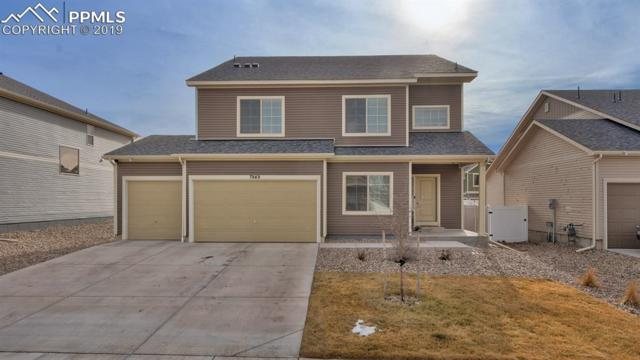 7949 Whistlestop Lane, Fountain, CO 80817 (#6078956) :: Action Team Realty