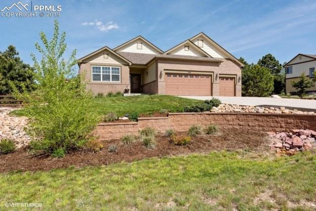 20035 Alexandria Drive, Monument, CO 80132 (#6080637) :: Action Team Realty