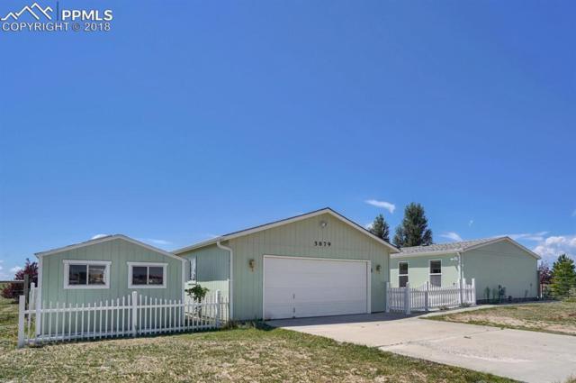 5879 E Sue Ellen Drive, Falcon, CO 80831 (#6083689) :: Harling Real Estate