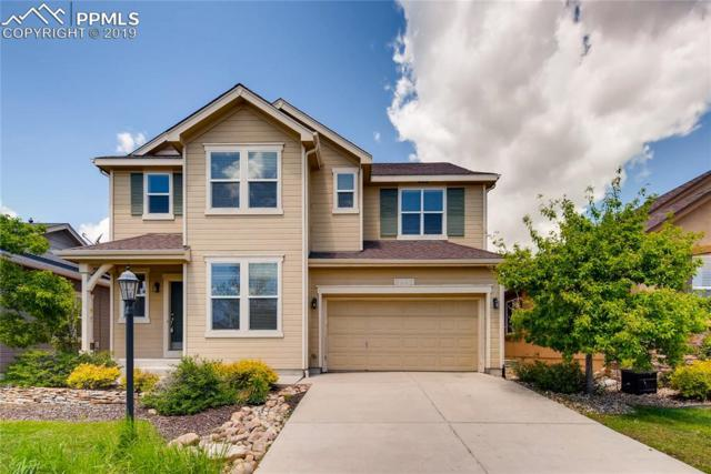 5042 Petrified Forest Trail, Colorado Springs, CO 80924 (#6088145) :: The Treasure Davis Team
