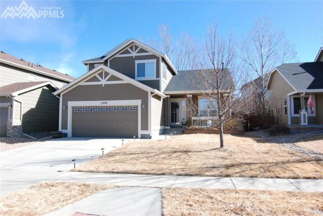 5393 Statute Drive, Colorado Springs, CO 80922 (#6089864) :: Action Team Realty
