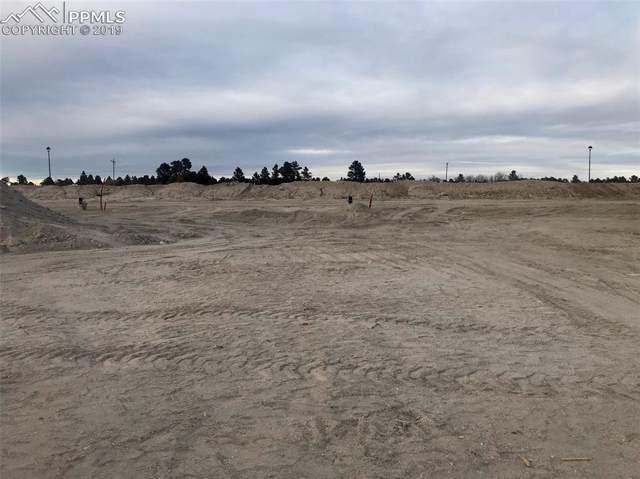 10366 Green Lake Court, Colorado Springs, CO 80924 (#6097332) :: 8z Real Estate
