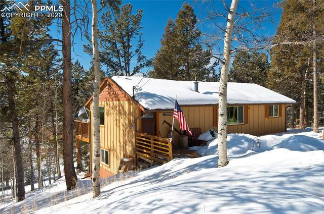 15 Rainbow Lane, Divide, CO 80814 (#6103851) :: 8z Real Estate