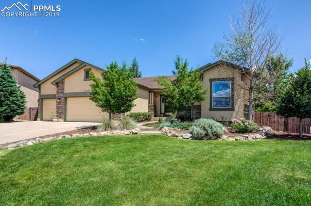 10261 Meadow Mist Court, Colorado Springs, CO 80920 (#6104895) :: CC Signature Group
