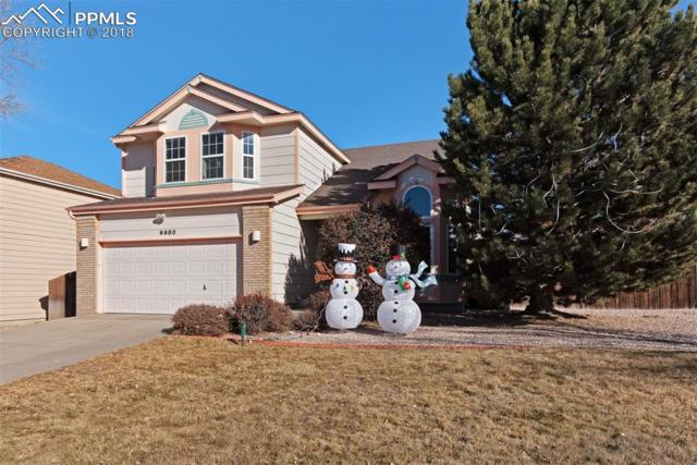 6980 Holt Drive, Colorado Springs, CO 80922 (#6106907) :: Harling Real Estate