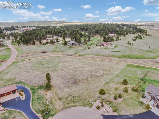 17445 Pond View Place, Colorado Springs, CO 80908 (#6108088) :: 8z Real Estate