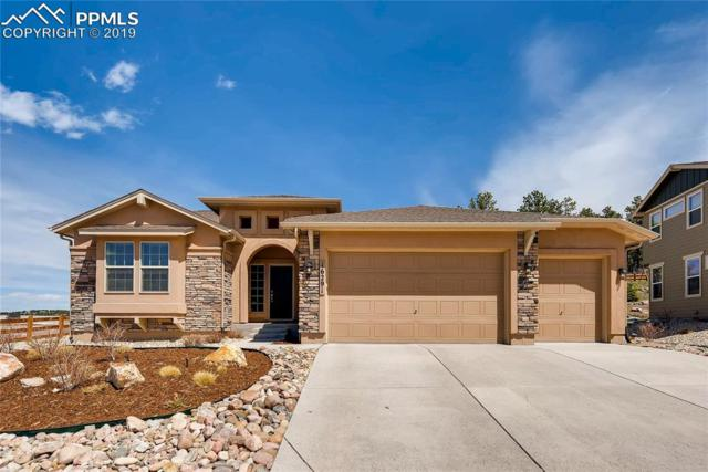16291 St Lawrence Way, Monument, CO 80132 (#6108827) :: Fisk Team, RE/MAX Properties, Inc.