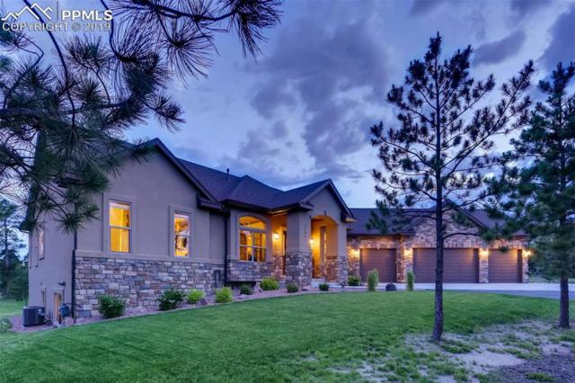 1345 Ambergate Court, Monument, CO 80132 (#6109545) :: Perfect Properties powered by HomeTrackR