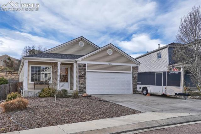 7565 Sistine Lane, Fountain, CO 80817 (#6111456) :: Fisk Team, RE/MAX Properties, Inc.