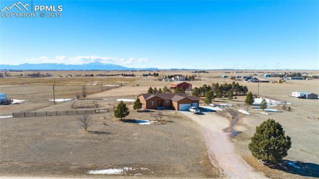 10180 Horseback Trail, Peyton, CO 80831 (#6111662) :: The Daniels Team
