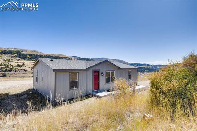 138 W Womack Drive, Cripple Creek, CO 80813 (#6123020) :: Tommy Daly Home Team