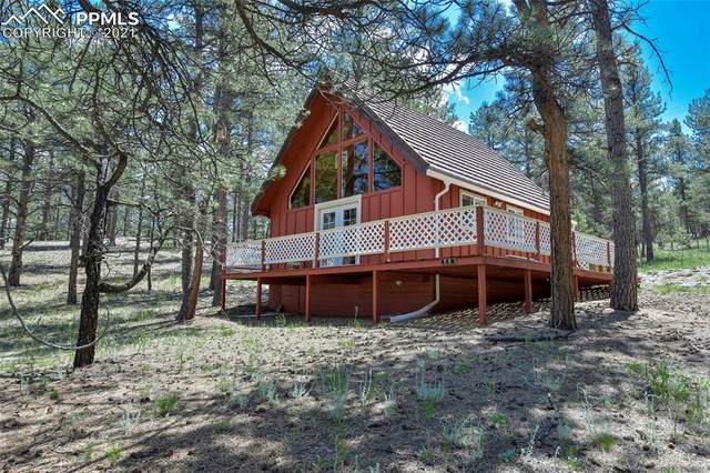 56 Miller Drive, Florissant, CO 80816 (#6125938) :: Action Team Realty