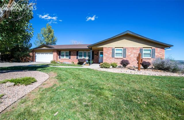 830 Point Of The Pines Drive, Colorado Springs, CO 80919 (#6126305) :: 8z Real Estate