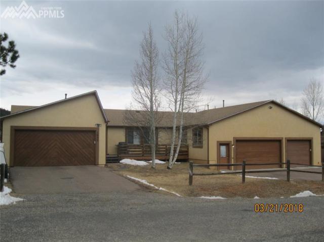 1650 Blackfoot Trail, Woodland Park, CO 80863 (#6126389) :: The Peak Properties Group