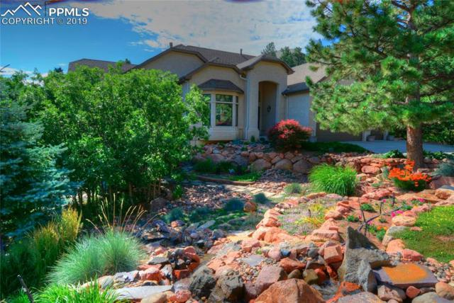 8415 Sibari Court, Colorado Springs, CO 80919 (#6128346) :: 8z Real Estate