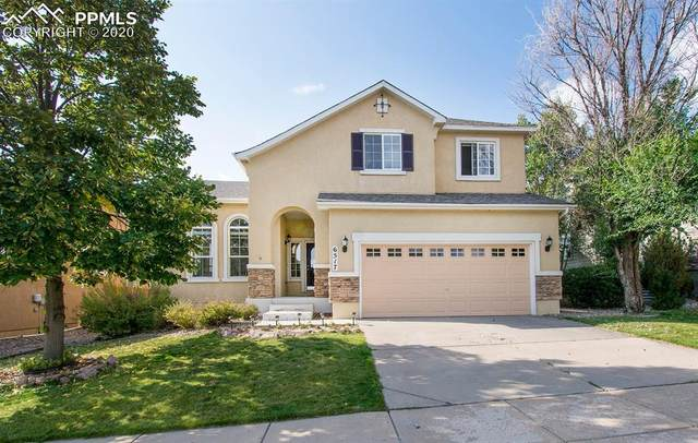 6517 Cool Mountain Drive, Colorado Springs, CO 80923 (#6129804) :: Tommy Daly Home Team