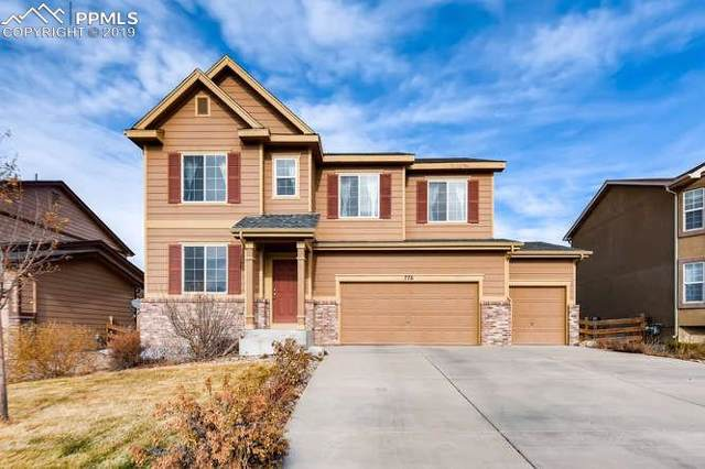 776 Chesapeake Avenue, Monument, CO 80132 (#6137000) :: Action Team Realty