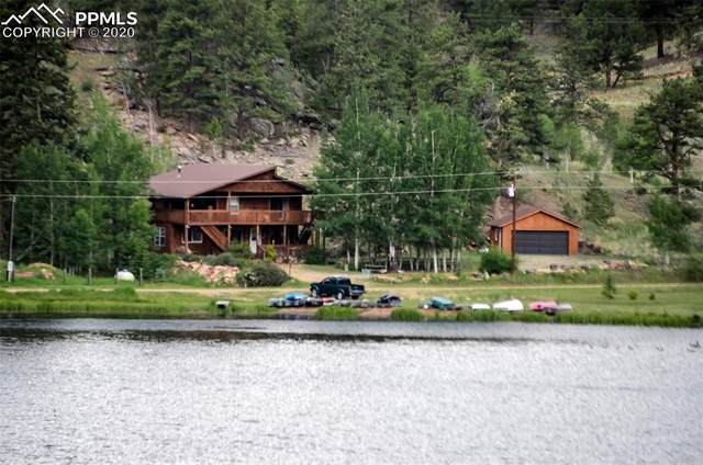 1131 Sleepy Joe Drive, Lake George, CO 80827 (#6140294) :: Finch & Gable Real Estate Co.