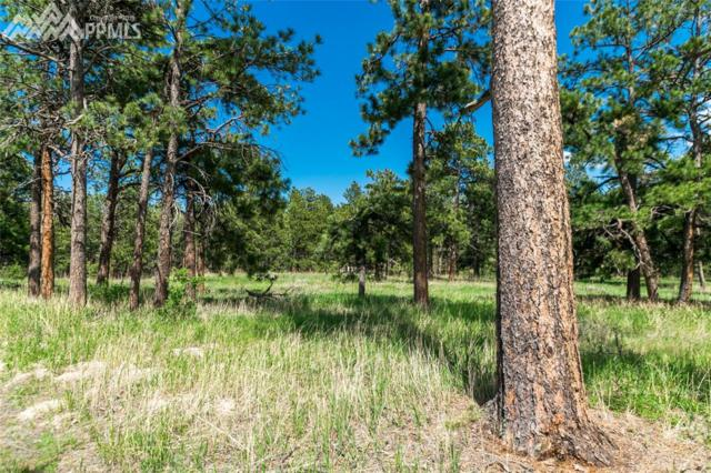19404 Hilltop Pines Path, Monument, CO 80132 (#6145299) :: 8z Real Estate