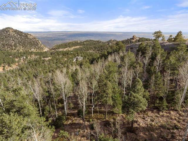 34 Waterfall Loop, Manitou Springs, CO 80829 (#6145533) :: Action Team Realty